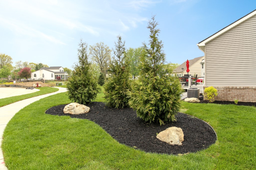 Plant Installation in South Lyon